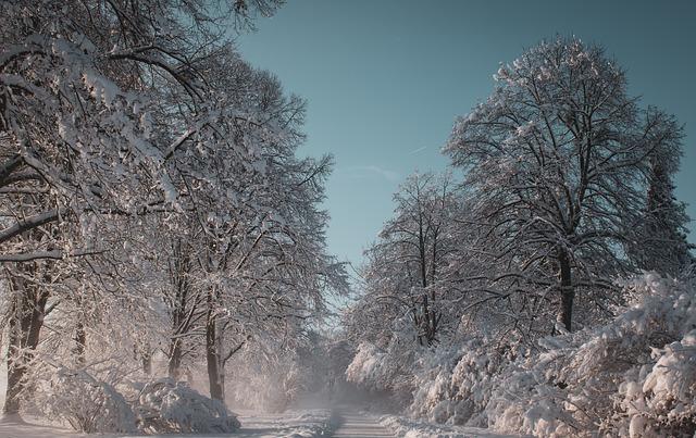Inverno - Lamento funebre